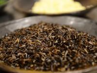 Yabani pirinç