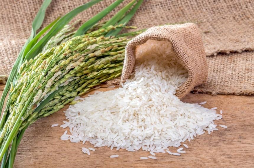 Pirinç Tüketimi Faydalı Mı? İşte 5 Önemli Fayda!