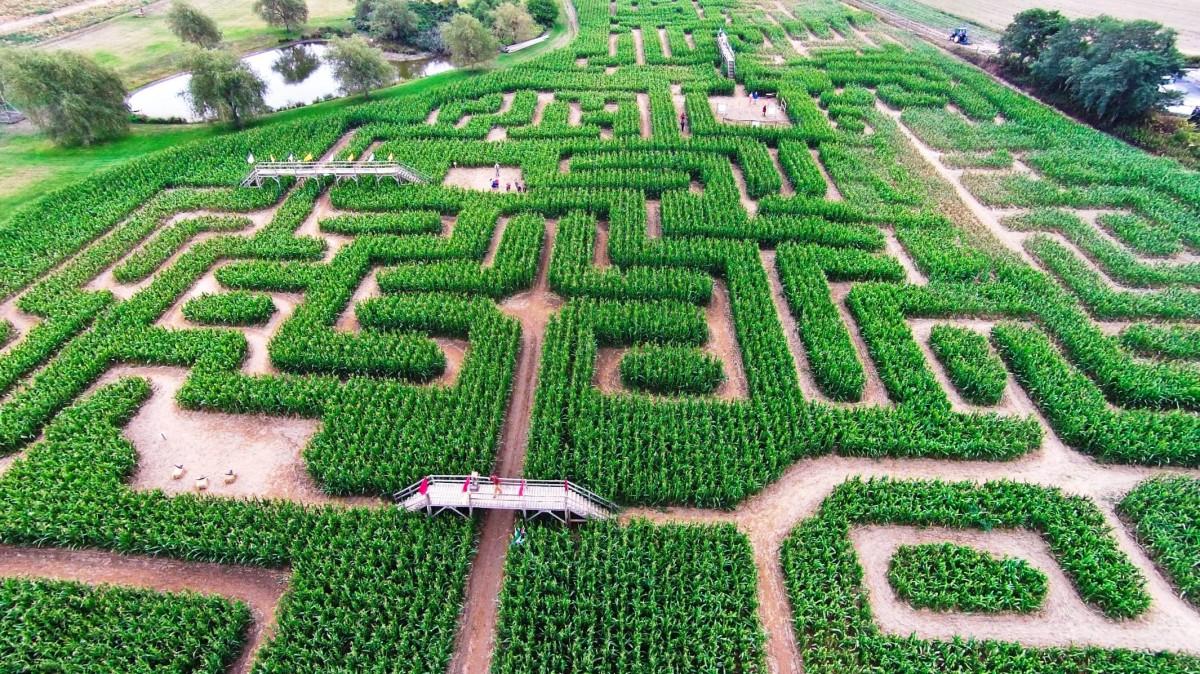 """Tarım ve Turizm Aynı Projede Buluştu, """"Mısır Labir..."""